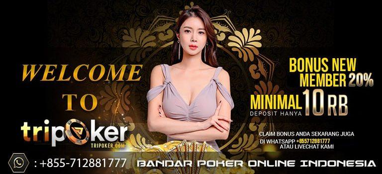 bandar idn poker online indonesia